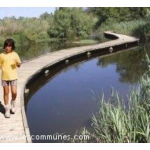 Sentiers de l étourneau aux Marais du Vigueirat