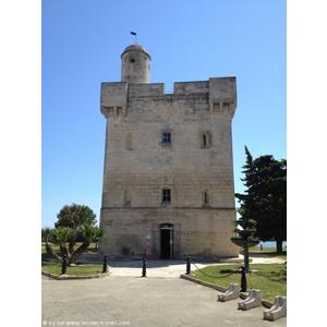 Commune port st louis du rhone mairie et office de - Navy service port saint louis du rhone ...