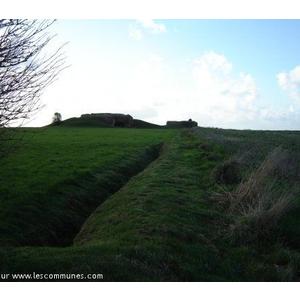 Site de la Batterie allemande de Longues-sur-Mer