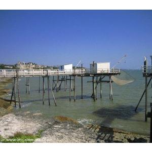 Commune st palais sur mer mairie et office de tourisme fr - Saint palais sur mer office du tourisme ...