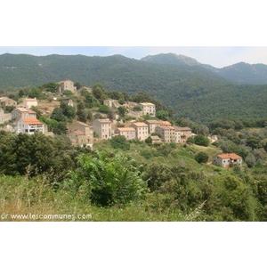 Commune de ALBITRECCIA