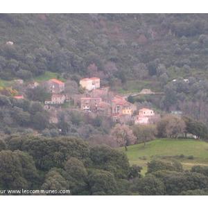 Commune de COGNOCOLI MONTICHI