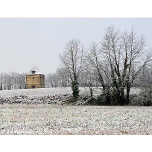 06.01.2009. Neige aux environs de Saint Pierre.
