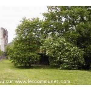 Commune Lucq De Bearn Mairie Et Office De Tourisme Fr
