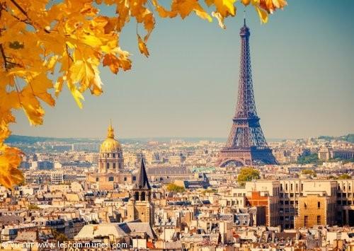 Caf De Paris Demande