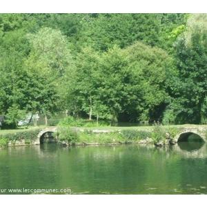 Ricou , son joli site sur la Sèvre vue du pont , ancien moili
