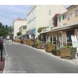 Commune giens mairie et office de tourisme fr - Office du tourisme presqu ile de giens ...